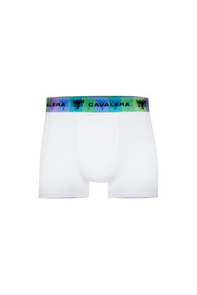 cueca-boxer-joe-algodao-001-branco-QE5494